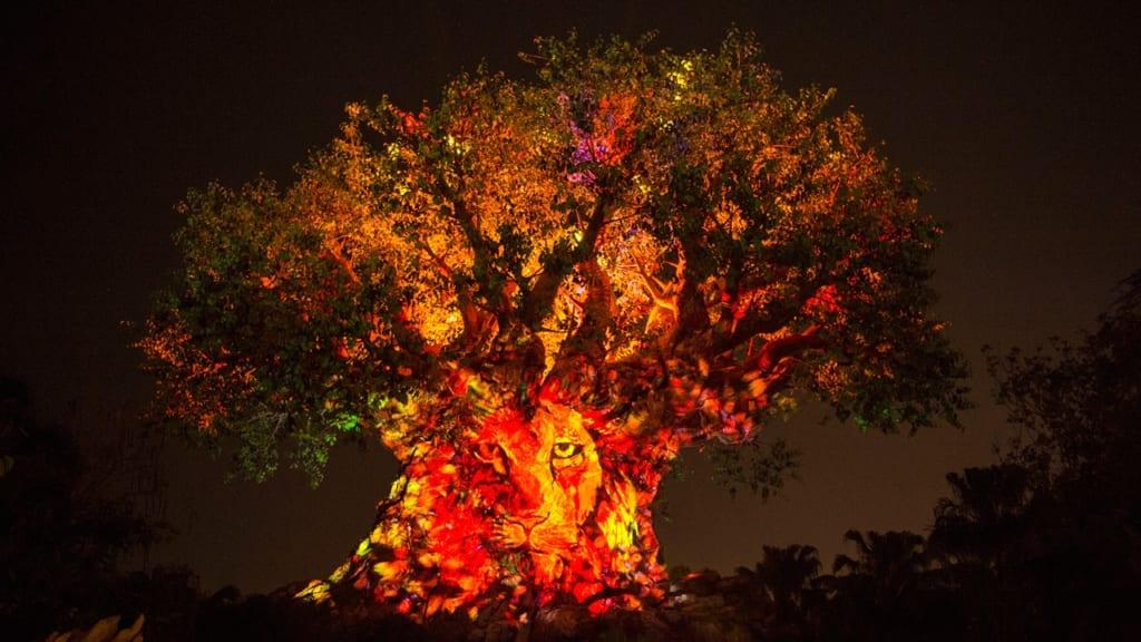 Tree of Life Awakenings Expanded Viewing Areas