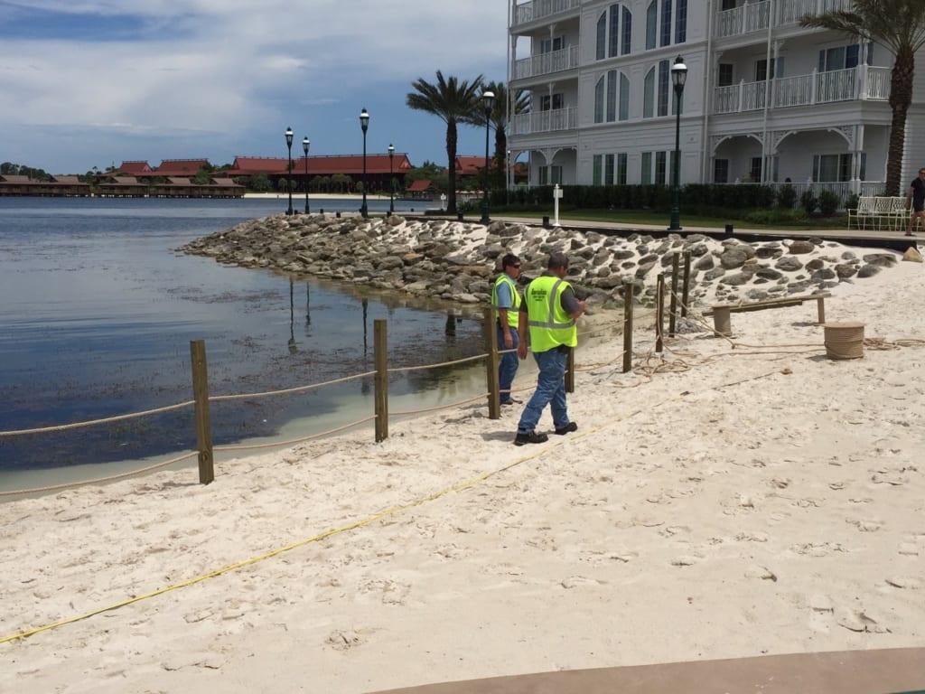 Walt Disney World Reopens Beaches After Gator Attack
