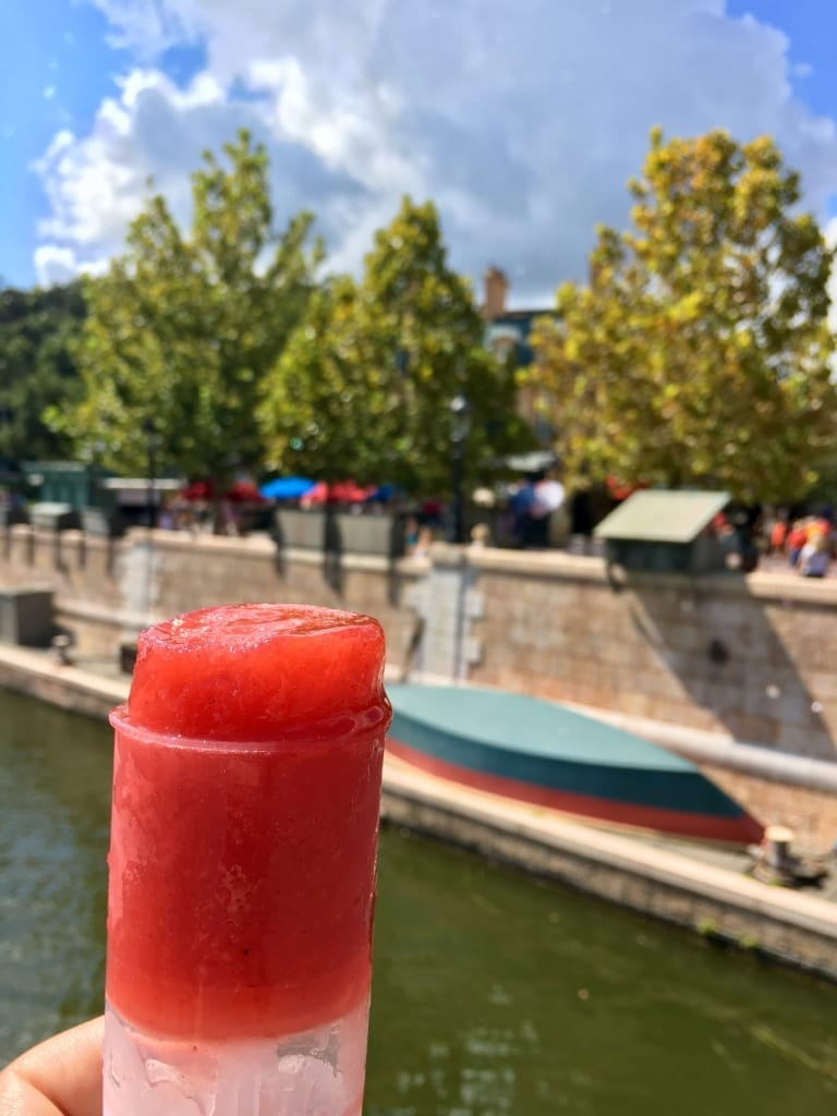 Epcot Food and Wine Festival Tips france