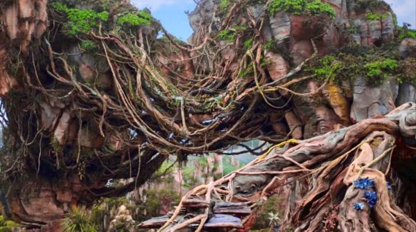 Pandora The World of Avatar B-Roll