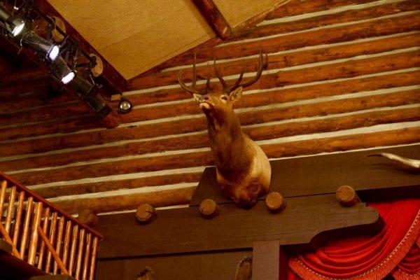 Hoop Dee Doo Musical Revue Deer decorations
