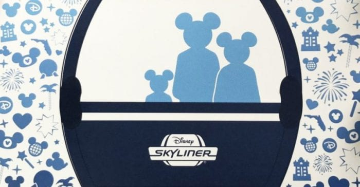 Disney Skyliner Logo on Flyers