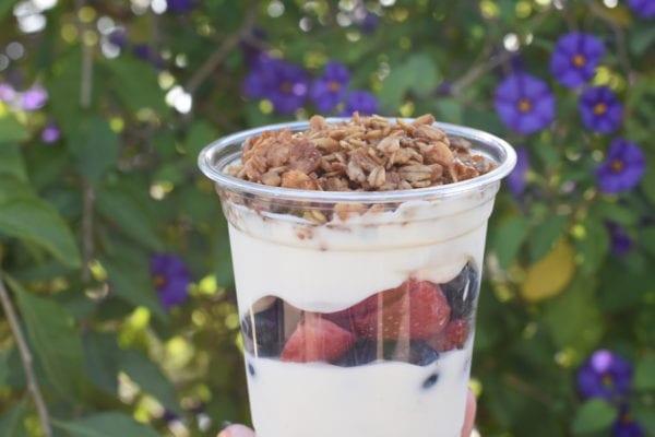 Disney Parks Sweet Treats July Fruit and Yogurt Parfait