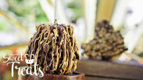 Disney Parks Sweet Treats July S'mores Candied Apples