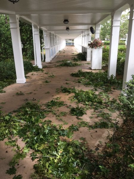 Hurricane Irma Damage at Walt Disney World