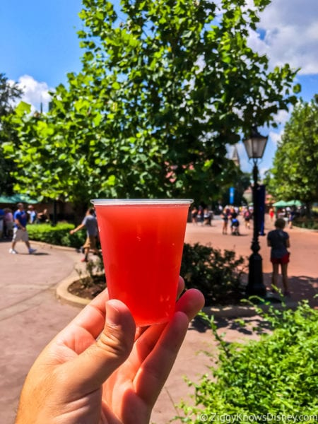 Pomegranate Beer Review 2017 Epcot Food and Wine Festival Schöfferhofer Hefeweizen Pomegranate Beer small glass