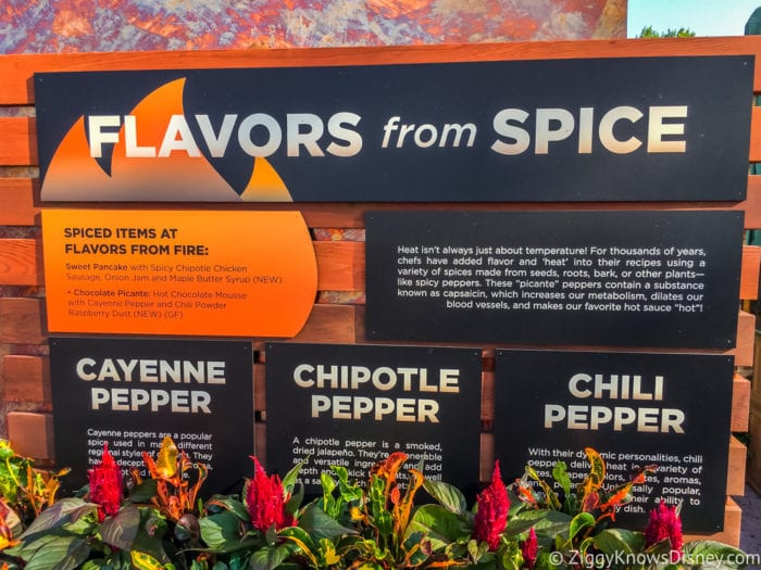 Flavors from Fire Review 2017 Epcot Food and Wine Festival flavors from spice