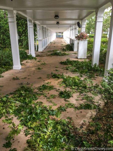 Hurricane Irma in Walt Disney World beach club pathway