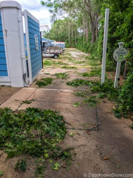 Hurricane Irma in Walt Disney World beach club go carts