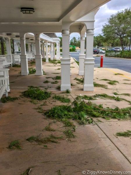 Hurricane Irma in Walt Disney World beach club bus stop