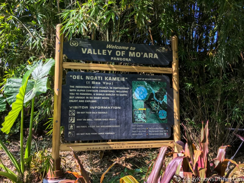 Satu'li Canteen Review Pandora Valley of Mo'ara sign