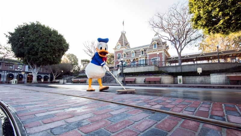 New Disneyland Brickwork Donald Duck