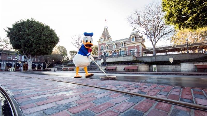 New Disneyland Brickwork Donald Duck