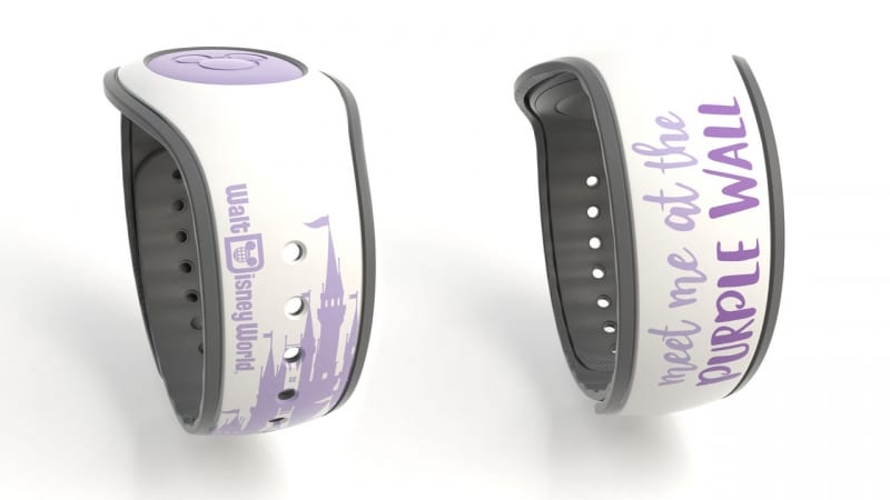 MagicBands March 2018 the wall