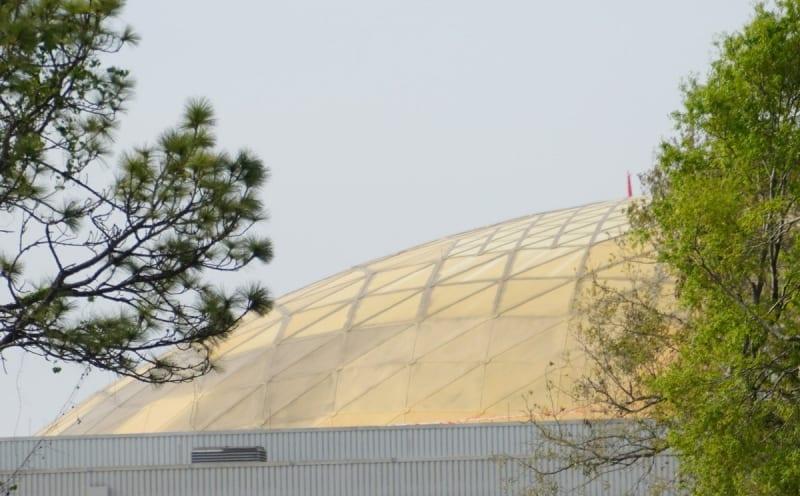 Wonders of Life Pavilion Roof Repair