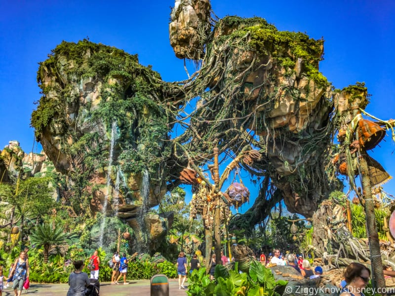 Technical Problems Close Pandora The World of Avatar Attractions for Days