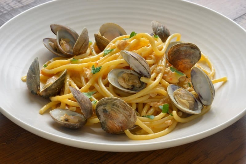 Terralina Crafted Italian Opening June 28th bucatini and clams