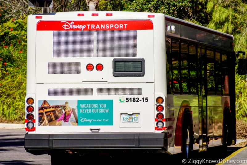 Walt Disney World Bus Arrival Times Now Available on My Disney Experience App