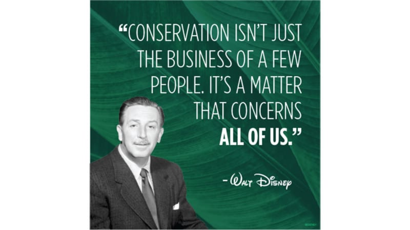 Disney Parks Eliminating Plastic Straws