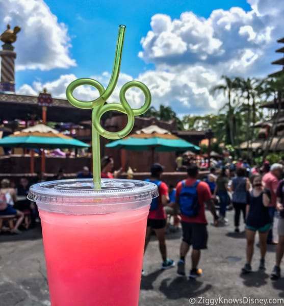 Disney Parks Eliminating Plastic Straws and Other Plastics by 2019